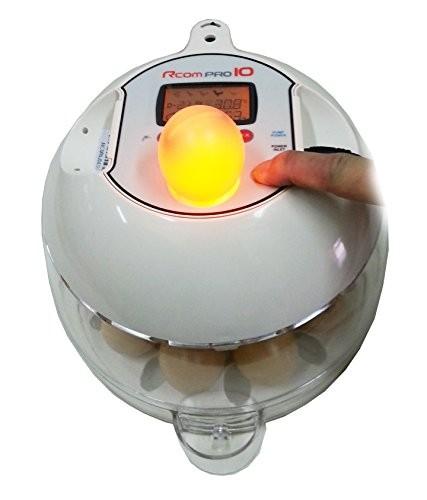 Incubadora R-COM 10 PRO PLUS